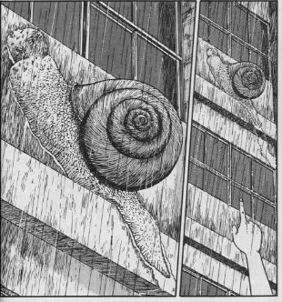 달팽이 인간