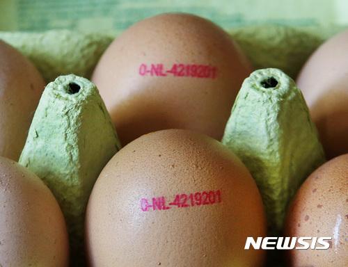 【프랑크푸르트=AP/뉴시스】네덜란드와 벨기에에서 발생한 살충제 오염 달걀사태가 유럽 각국으로 확산하고 있다. 독일은 7일(현지시간)이번 사건에 대해 정식 수사를 시작했다고 밝혔으며, 프랑스도 살충제 '피프로닐' 에 오염된 달걀이 자국 내에 유입됐다고 밝혔다. 사진은 4일 독일 프랑크푸르트의 한 슈퍼마켓에 진열된 달걀 모습.2017.08.08