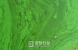 [정리뉴스] '공사비 22조' 4대강, 사후 관리비는 얼마나 들어갈까?'