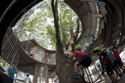 유치원 내부에서도 아이들이 느티나무를 오르내리면서 놀 수 있도록 밧줄을 마련했다. /조선DB