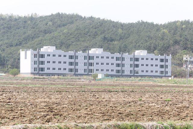 한 건설사가 원전특수를 기대하며 경북 영덕군 원직리 들판에 짓고 있는 '나홀로 아파트'. 인근에 구멍가게조차 없어 썰렁한 모습을 보이고 있다.