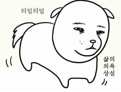 /출처=대학일기