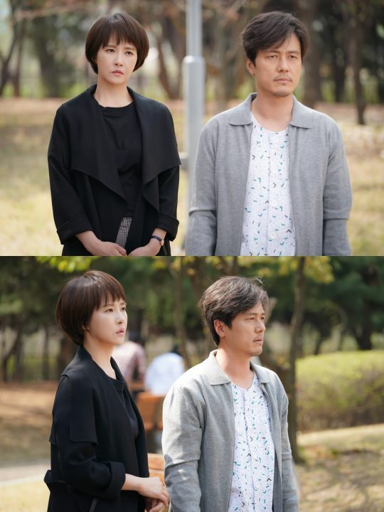배우 김선아(왼쪽)와 감우성/사진제공=SBS '키스 먼저 할까요'
