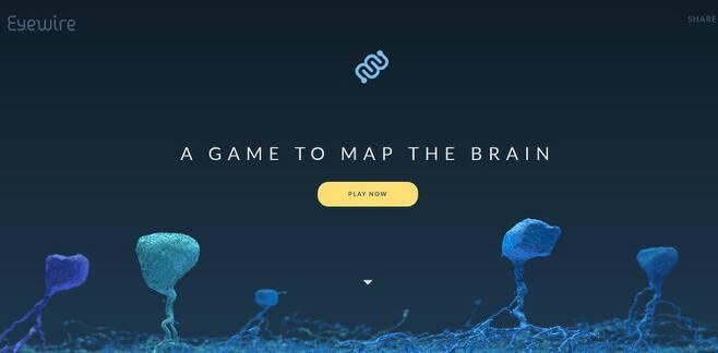 온라인게임 '아이와이어'의 첫 화면. 출처: eyewire.org