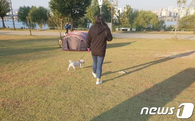12일 서울 여의도 한강공원에서 개에게 목줄을 착용하고 산책 중인 견주.© News1 이기림 기자