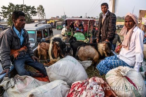 네팔 가디마이 축제에 참여하기 위해 희생 제물인 염소를 갖고 온 힌두교도. 2019.12.2 [AFP=연합뉴스]