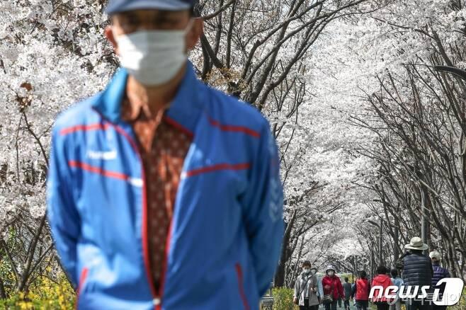 완연한 봄날씨를 보인 지난달 30일 오전 서울 강남구 도곡동에서 마스크 등으로 중무장한 시민들이 벚꽃길 산책을 하고 있다. /사진=뉴스1