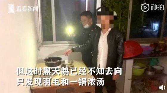 중국 진화시 푸장현에 사는 우씨는 호수의 블랙 스완을 몰래 잡아먹었다가 경찰에 붙들렸다. 코로나 사태 이후 야생동물을 먹지 말자며 법제화를 추진중인 중국 당국의 노력이 무색하다. [중국 환구망 캡처]