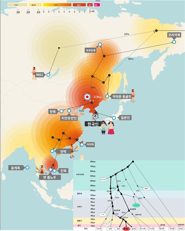 한국인과 동아시아인 기원 예측 모델에 기반한 한국인 혼혈과 관계된 고대와 현대 게놈들. 회색박스는 게놈정보가 밝혀진 과거 인족들을 기준으로 한국인의 기원과 혼합을 컴퓨터로 예측한 혼혈 족보 (클리노믹스 제공) 2020.06.04 / 뉴스1