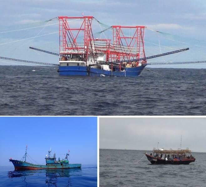 위는 북한 동해에서 활동하는 중국 오징어잡이배다. 50m가 넘는 크기에 조명도 매우 많아 밝다. 아래 왼쪽은 중국의 쌍끌이 기선 저인망의 모습이다. 이런 어선 두 척이 짝을 지어 조업을 한다. 길이는 30m 이상이다. 아래 오른쪽은 북한 영세 오징어잡이배다. 길이가 길어야 20m다. 동해어업관리단, 이승호 씨 제공
