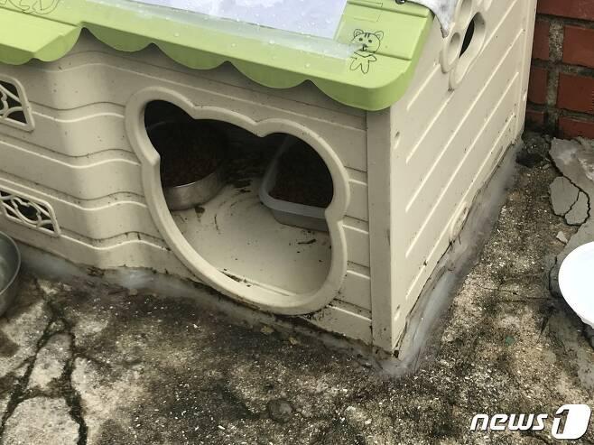 부산 남구 대연동의 한 주택가에 길고양이 급식소가 설치돼 있다.2020.07.31/뉴스1 © News1 이유진 기자