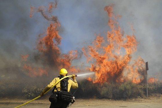 최근 미국 캘리포니아에서 발생한 산불은 이상 고온 현상이 겹치며 화재 진압이 쉽지 않았다. 소방수가 불길을 잡으려고 애쓰는 모습. [AP=연합뉴스]