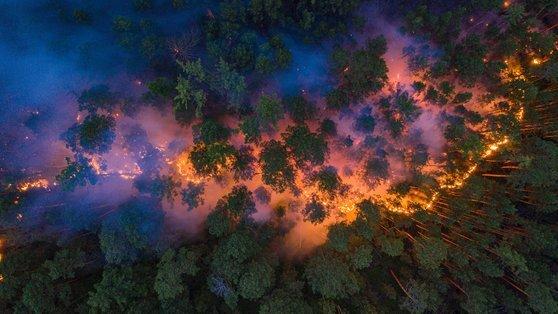 지난달 17일 러시아의 숲이 활활 타고 있는 모습. 러시아가 온난화로 이상 고온현상을 겪고 있는 가운데 산불까지 겹치면서 화재 진압에 애를 먹었다. [로이터=연합뉴스]