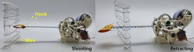 카멜레온의 혀를 모방한 서울과기대의 소형 포획로봇 '스내처'. IEEE 스펙트럼