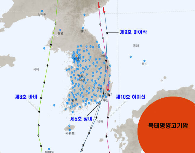 올해 우리나라에 영향을 준 '장미' '바비' '마이삭' '하이선' 등 태풍들. 모두 경로가 남에서 북으로 북진하는 경향을 보였다. 기상청 국가태풍센터 제공