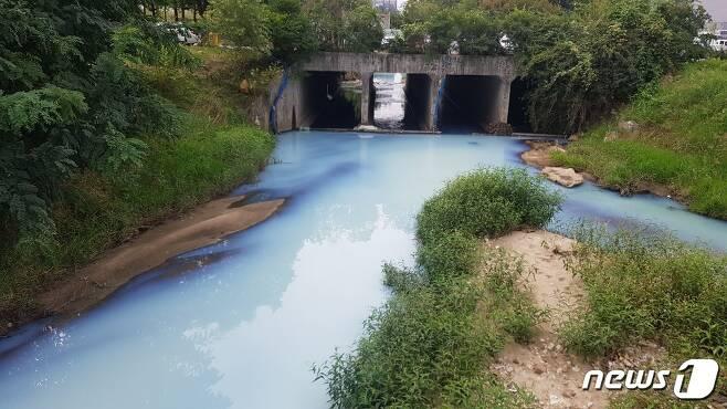 천안 백석동의 한 공장에서 유출돼 시청 앞 장재천에 흐르고 있다.© 뉴스1