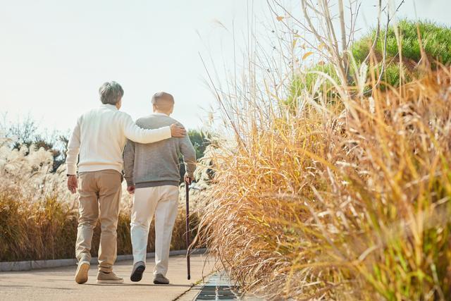 걷기 등 허벅지 근력 운동을 꾸준히 하면 관절염과 치매를 예방하는 데 도움이 된다. 게티이미지뱅크