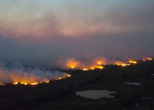 세계적 열대늪지 브라질 판타나우 화재 [브라질 마투 그로수주 정부]