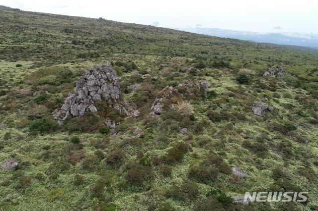 [제주=뉴시스] 한라산 선작지왓의 탑궤와 높이 솟은 돌탑들. (한라산연구부 제공)