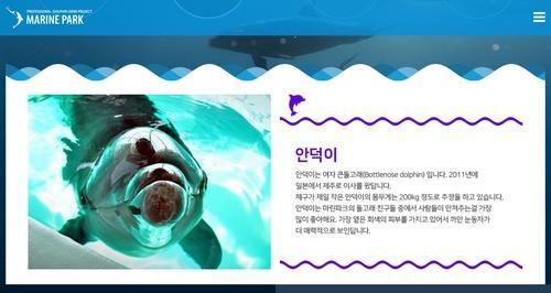 마린파크 홈페이지에 나와 있는 큰돌고래 안덕 소개 내용. 마린파크 홈페이지 캡처