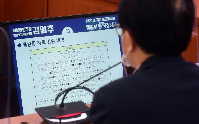 음란물 자료 전송 내역을 바라보는 이승환 민주평화통일자문회의 사무처장. /연합뉴스