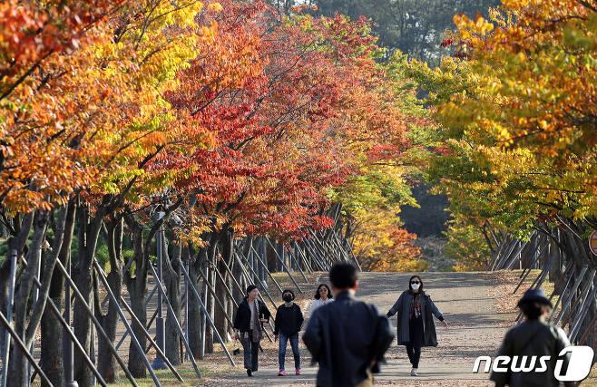완연한 가을 날씨를 보이고 있는 20일 오후 울산 남구 문수체체육공원을 찾은 시민들이 울긋불긋 물든 단풍을 보며 가을 정취를 만끽하고 있다. 2020.10.22/뉴스1 © News1 윤일지 기자