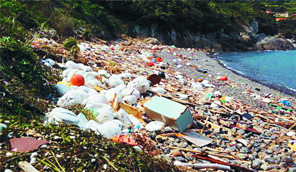 다도해해상국립공원에 있는 금오도 동고지마을 해변가에 지난 달 10일 각종 해양 쓰레기가 쌓여 있다. 윤준병 의원실 제공.