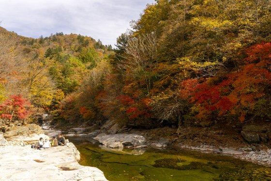 일제 강점기 벌목한 나무를 한강으로 띄웠던 보메기. 이맘때 가을 산행객을 위한 최고의 쉼터기도 하다.