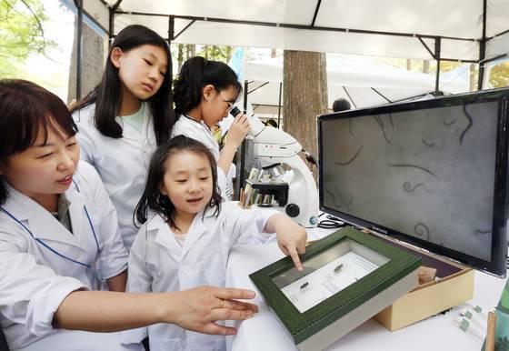 서울 양재동 양재시민의 숲에서 열린 '숲으로 가자! 놀자, 쉬자, 웃자' 행사에 참가한 어린이들이 '나무의사 되어보기' 체험을 하고 있다. [연합뉴스]