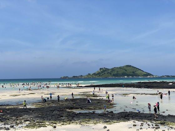 지난 8월 14일 제주 해수욕장를 찾은 관광객들이 피서를 즐기고 있다. 최충일 기자