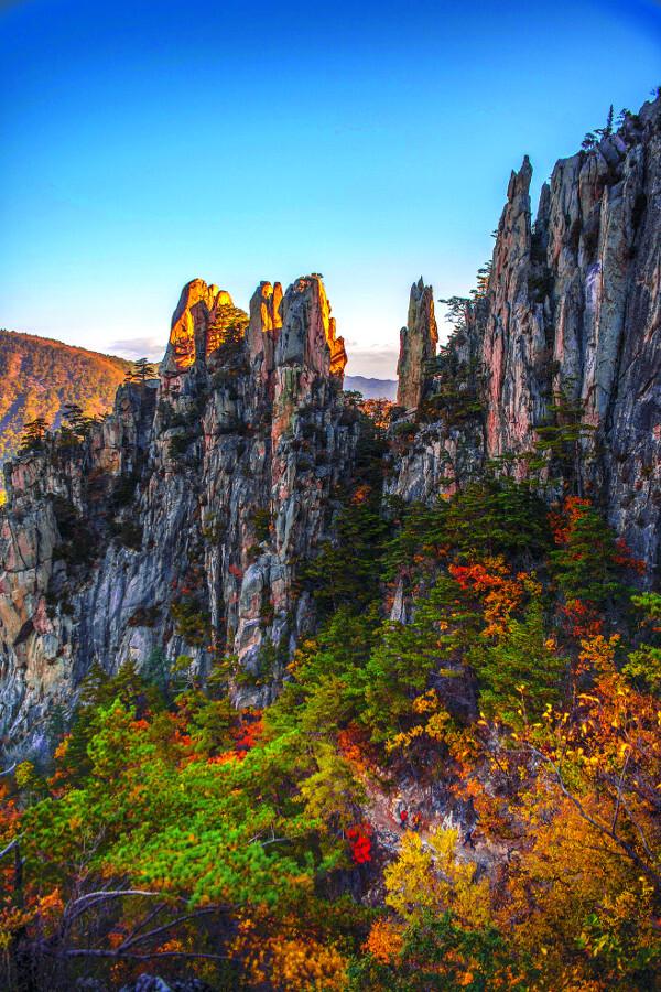 강원도 동해시 무릉계곡 '베틀바위전망대'에서 본 장엄한 베틀바위. 빨갛고 노랗게 물든 단풍에 싸여 삐죽 솟은 암봉이 아침 햇빛을 받아 황금빛을 띠고 있다.