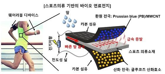 스포츠의류 기반의 바이오 연료전지 개요도 개발된 바이오 연료전지는 땀에 있는 포도당을 원료로 하여 전기에너지로 전환 할 수 있다. 연료전지의 구성은 글루코즈 산화효소 Glucose oxidase (GOD)가 코팅된 카본섬유(carbon cloth)를 산화 전극으로 Prussian Blue 나노입자와 Multi wall carbon nanotube가 기능화된 카본섬유를 환원 전극으로 활용하였으며, 빠른 모세관 유동과 증발에 의해 자동적으로 효율적인 연료(땀) 공급을 할 수 있도록 스포츠 섬유 기반의 연료 공급 채널이 양 전극 사이에 집적화되어 있다/사진=서강대