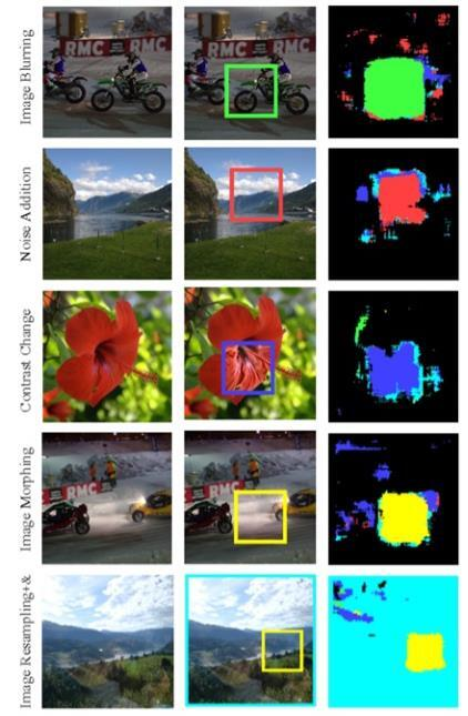 필수 변이 탐지 결과 왼쪽은 원본, 중간은 변형 적용 이미지, 오른쪽은 분석 결과 [KAIST 제공. 재판매 및 DB 금지]