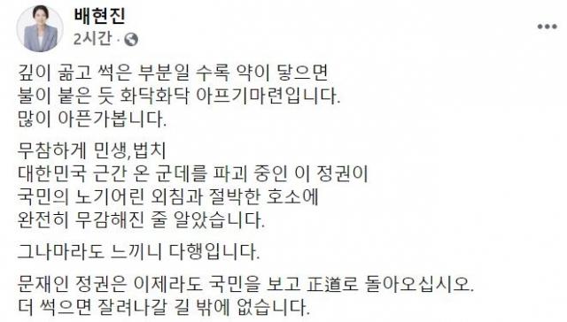 배현진 의원 페이스북 캡처