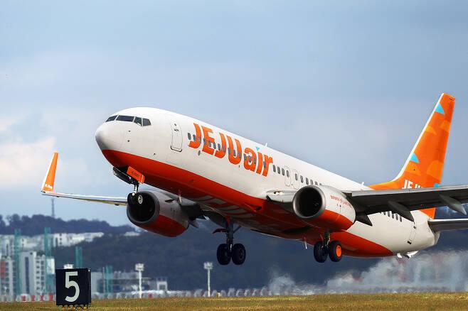 제주항공 운영 항공기(뉴스1DB)© 뉴스1