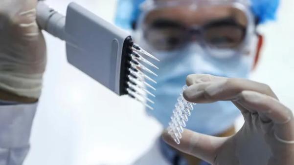 2020년 12월 12일(현지시각) 페루 보건당국이 중국 제약사 시노팜의 백신 임상시험을 중단한다고 밝혔다. / AP연합뉴스
