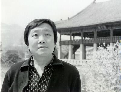 김용운 소설가
