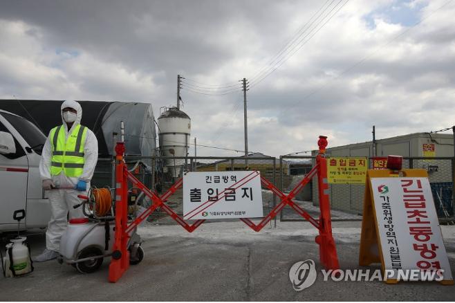 AI가 발생한 가금농장 통제. 연합뉴스