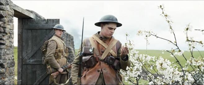 영화 '1917'에서 블레이크 일병은 버려진 집 마당 체리나무에 핀 꽃을 보며 고향의 체리를 떠올린다./스마일이엔티
