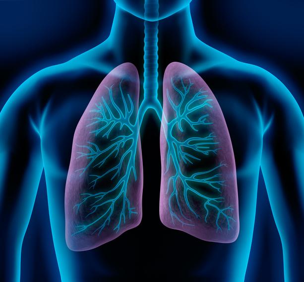 폐활량을 늘리기 위해서는 바른자세가 필요하다. /사진=게티이미지뱅크
