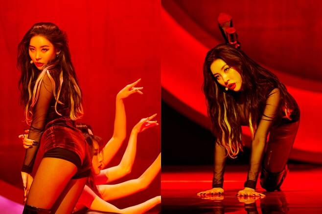 선미가 신곡 '꼬리' 무대를 하는 모습. 댄서들의 팔 동작을 활용해 꼬리를 표현했다. 오른쪽 사진에서는 다리를 활용해 꼬리를 나타냈다. 어비스컴퍼니 제공