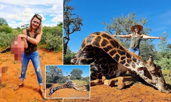 희귀 기린 '심장' 손에 들고 기념 촬영…남아공 트로피 사냥꾼 논란