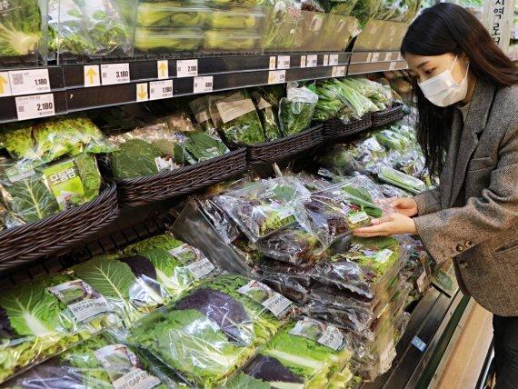 롯데마트가 '오늘 새벽 수확, 오늘 매장 입고' 농산물을 선보인다고 4일 밝혔다. 롯데마트 제공.