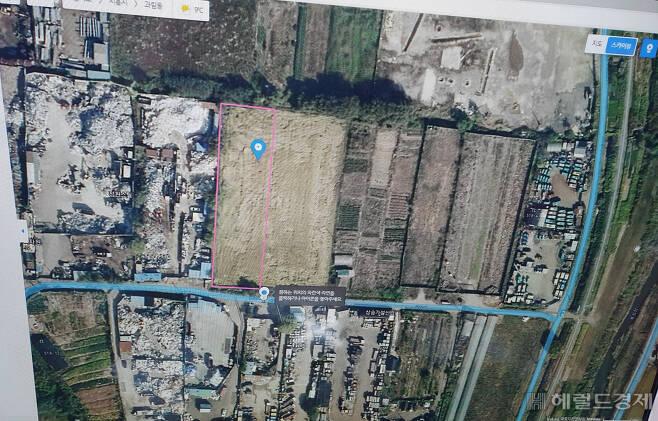 지도에 보이는 필지(연결된 2필지로 약 2040여평에 달한다)가 LH직원이 투기했다고 알려진 땅이다. 이곳은 현재 버드나무과의 소형 묘목이 가득 심어져있다. [사진=이민경 기자]