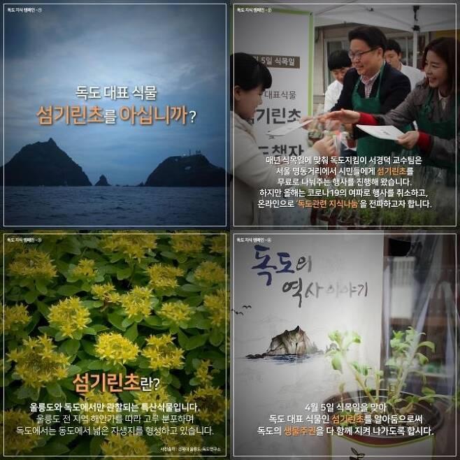 독도 대표 식물 섬기린초 관련 카드 뉴스. 서경덕 교수 제공