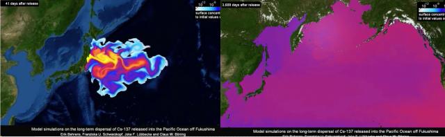 지난 2012년 독일 헬름홀츠 지구해양연구소(Geomar Helmholtz-Zentrum)가 분석한 후쿠시마 원전 발전소 오염수 방출 시나리오. 방류 41일차(왼쪽)와 방류 3,688일차(오른쪽)의 모습. /출처=시나닷컴