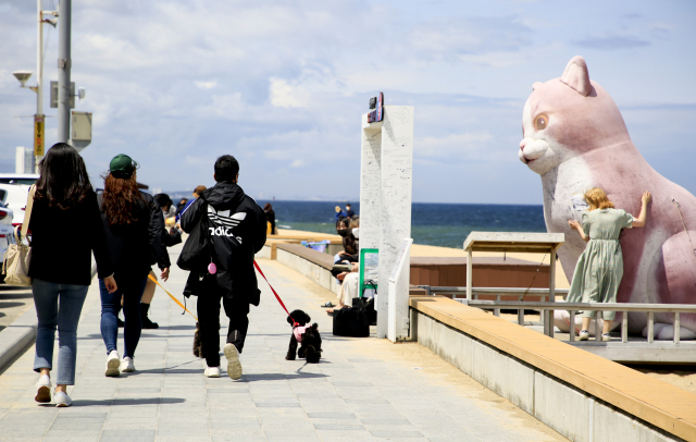 안목해변은 실내보다 해변가를 걸으며 인증 사진을 남기려는 관광객들이 더 많다. 사진은 안목해변 인기 포토존인 대형 고양이상.