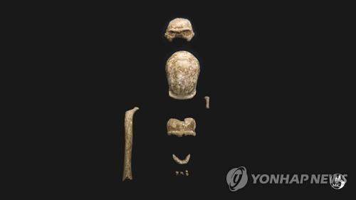 과타리 동굴에서 발견된 네안데르탈인 유골 [AP=연합뉴스]