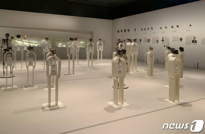 국립중앙박물관의 '호모 사피엔스 : 진화∞ 관계& 미래?'전.© 뉴스1 윤슬빈 기자