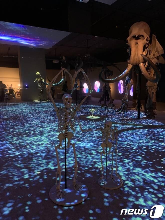 국립중앙박물관의 '호모 사피엔스 : 진화∞ 관계& 미래?' 특별 전시는 오는 18일부터 9월26일까지 열린다.© 뉴스1 윤슬빈 기자